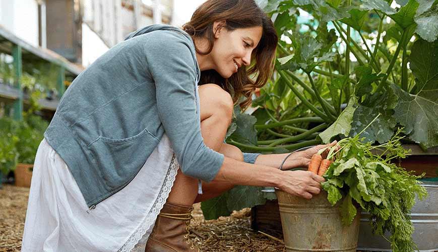 Strains from Gardening