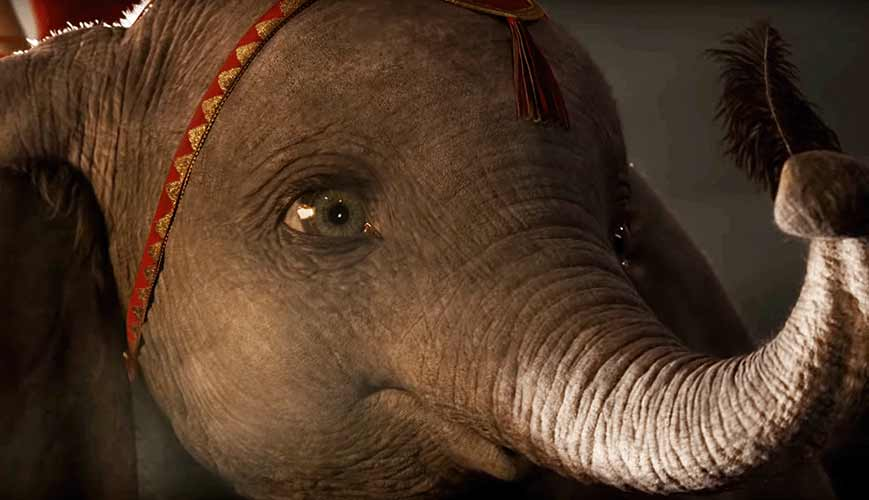 Dumbo's Best Lessons