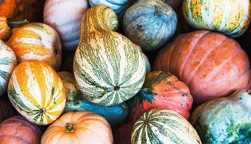 Gourds for Good